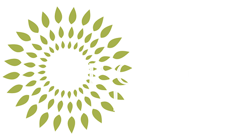Discovery Dental logo for mobile